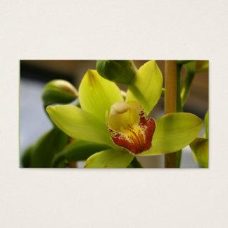 Orchideen-Visitenkarten Visitenkarte