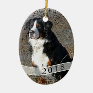 Ornement ovale daté de Noël de photo de chien
