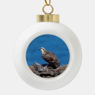 Osprey auf den Felsen Keramik Kugel-Ornament