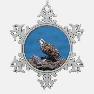 Osprey auf den Felsen Schneeflocken Zinn-Ornament