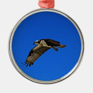 Osprey im Flug II Silbernes Ornament