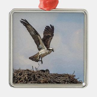 Osprey in einem Nest Silbernes Ornament