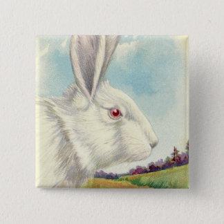 Osterhasen-weißes Albino-Feld Quadratischer Button 5,1 Cm