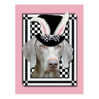 Ostern - etwas Häschen-Lieben Sie - Weimaraner Postkarte