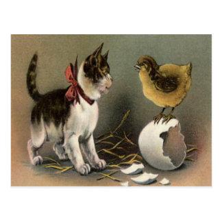 Ostern-Küken-Ei-Katzen-Kätzchen Postkarte