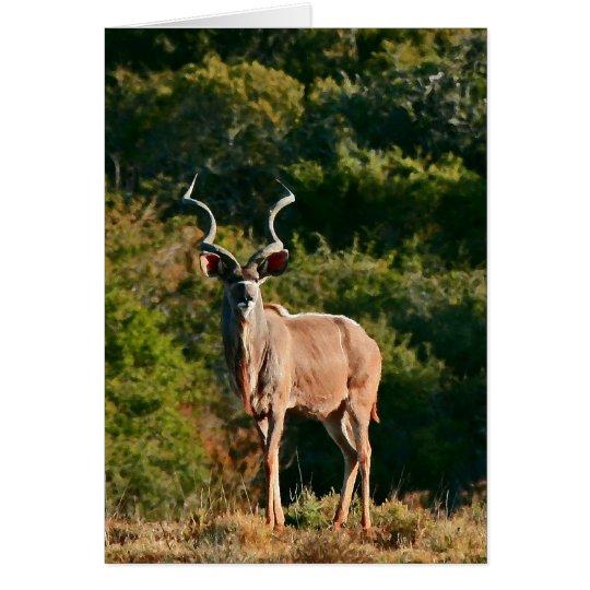Ostkap Kudu Anmerkungskarte Mitteilungskarte