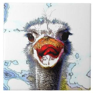 Ostrich20150701 Fliese