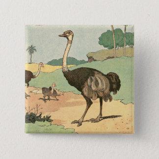 Ostrich-Geschichten-Buch illustriert Quadratischer Button 5,1 Cm