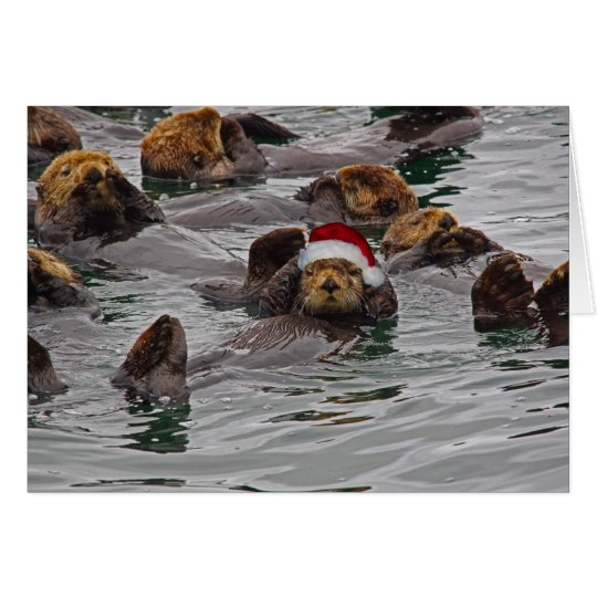 Otter-Sankt-Weihnachtskarte Karte