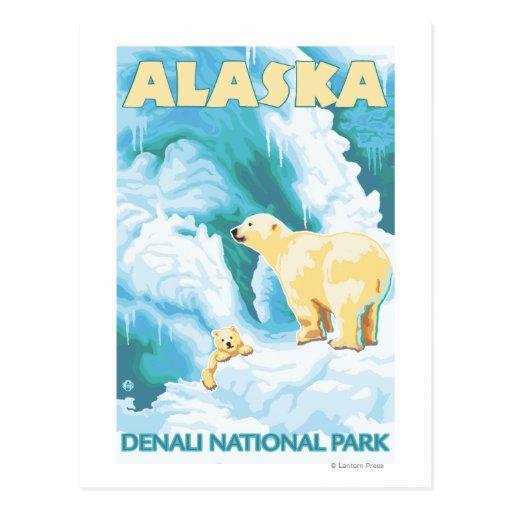 Ours blancs et CUB - parc national de Denali, Alas Carte Postale