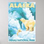 Ours blancs et CUB - parc national de Denali, Alas Affiches