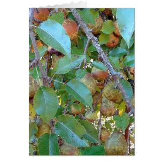 Overladen Birnen-Baum Karte