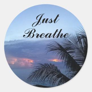 Ozean-Sonnenaufgang-Palme atmen gerade Runder Aufkleber