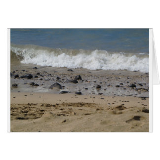 Ozean und Felsen Karte