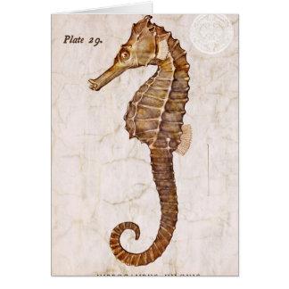 Ozean-Vintages Seepferdegeschöpf-Seepferd Mitteilungskarte