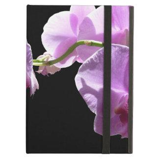 © P Wherrell rosa Orchidee auf schwarzem Hintergru