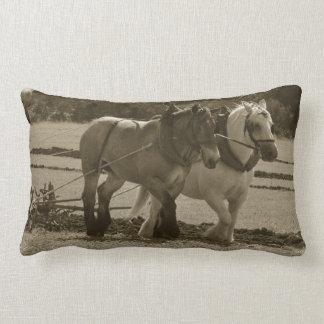 Pair of plowing horses