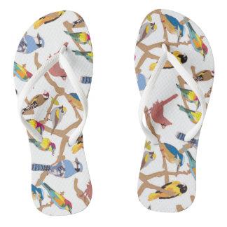 Paare Vögel Badesandalen