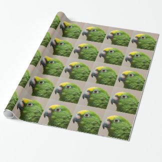 Packpapiergelb ging grünen Papageien Amazonas Geschenkpapier