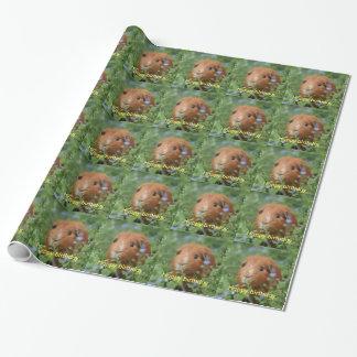 Packpapieringwermeerschweinchen personifizieren geschenkpapierrolle