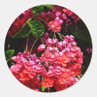 Pagoden-Blumen-buntes rotes und rosa Blumen Runder Aufkleber