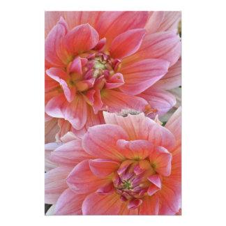 Paires de fleurs de dahlia, espèces de dahlia, photos sur toile