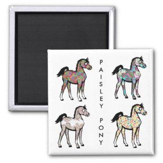 Paisley-Pony-Magneten Quadratischer Magnet