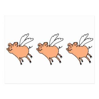 Palingates Fliegenschweine Postkarte