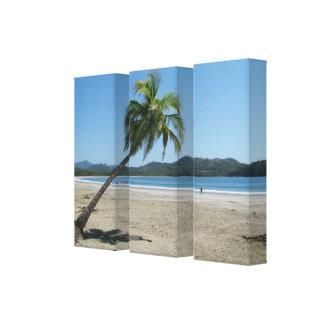 Palme am Strand Gespannter Galeriedruck