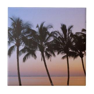 Palme, Morgen Keramikfliese