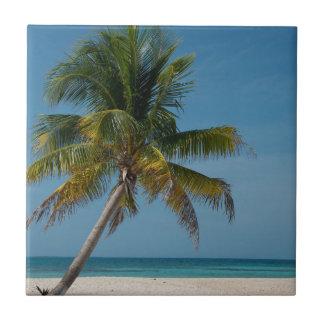 Palme und weißer Sandstrand 2 Fliese