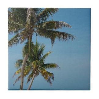 Palme und weißer Sandstrand Fliese