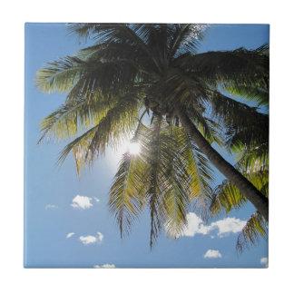 Palmen Fliese
