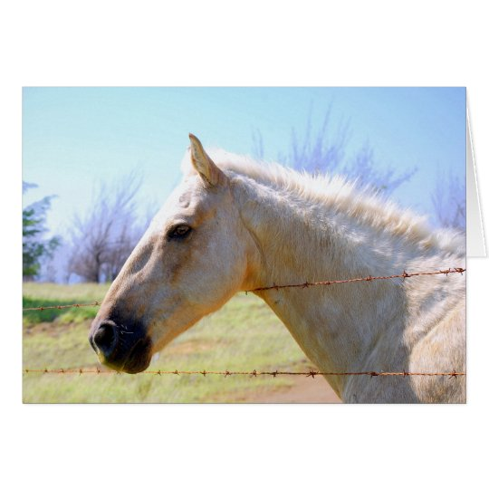 Palomino-Pferd an der Zaun-Karte Grußkarte