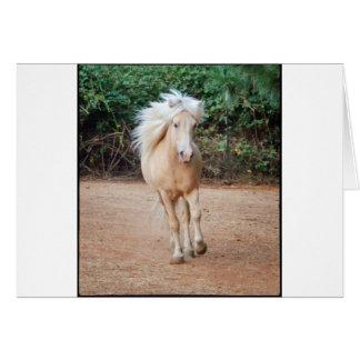 Palomino-Pferd Karte