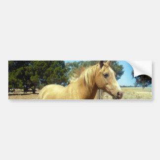 Palomino-Pferdeschönheit, Autoaufkleber