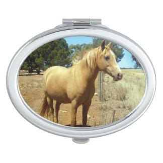 Palomino-Pferdeschönheit, Schminkspiegel