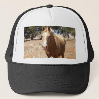 Palomino-Pferdeschönheit, Truckerkappe