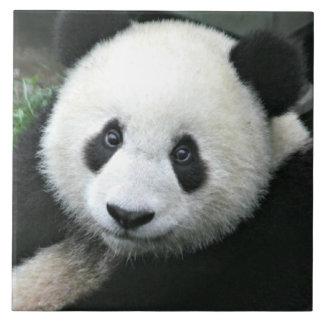 Panda-Bär Keramikfliese
