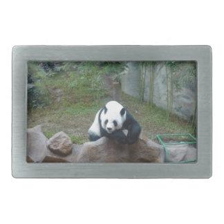 Panda-Bär Rechteckige Gürtelschnalle