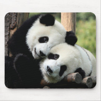 Panda-Bären Mousepads