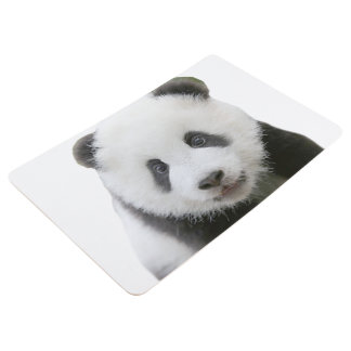 Panda-Gesicht Bodenmatte