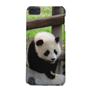 Panda iPod Touch 5G Hülle