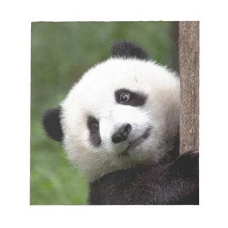 PandaBärenjunges Notizblock