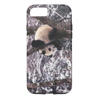 Pandajunges, das auf dem Baum bedeckt mit Schnee iPhone 8/7 Hülle