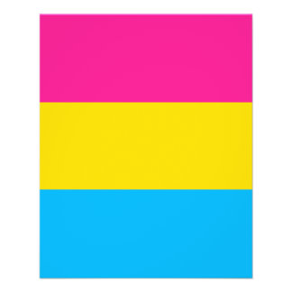 """""""PANSEXUAL STOLZ-FLAGGE """" 11,4 X 14,2 CM FLYER"""