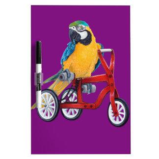 PapageiMacaw auf Dreiradfahrrad Trockenlöschtafel