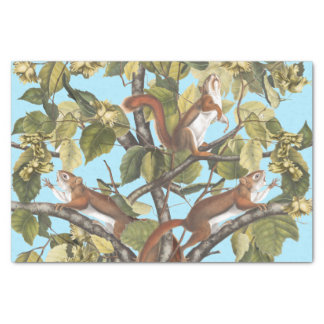 Papier Mousseline Copie de motif d'écureuil de poster de animal