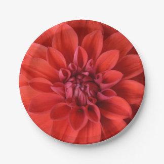 Papierplatte des roten Dahlie-Blumendruckes Pappteller 17,8 Cm