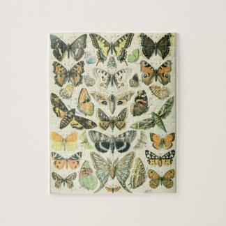 Papillion Puzzlespiel